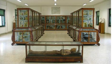 Museo Biomedica